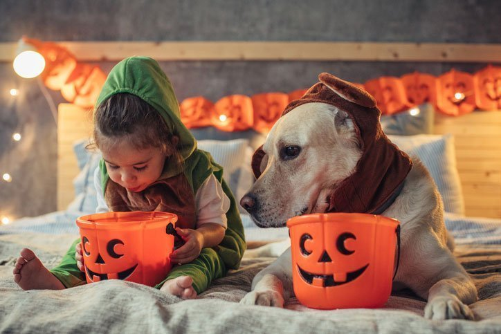 girl and dog in costum