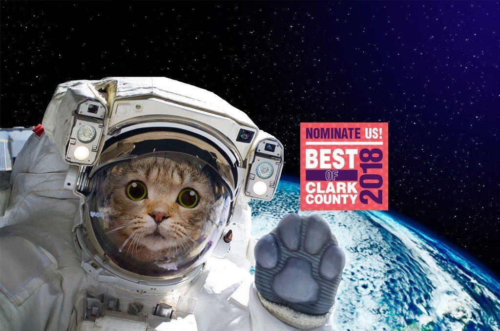 cat in space suite